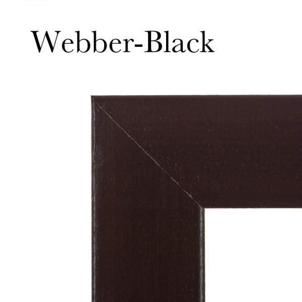 matchprint-frame-webber-black