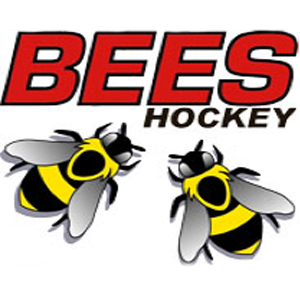 Bingley Bees Junior Hockey 13/03/2016