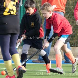 Bingley Bees Junior Hockey-